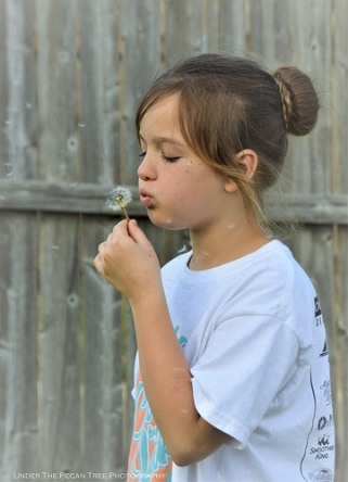 Sara loves blowing off the Dandelion seeds.