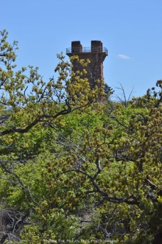 Another look at the tower from the trail