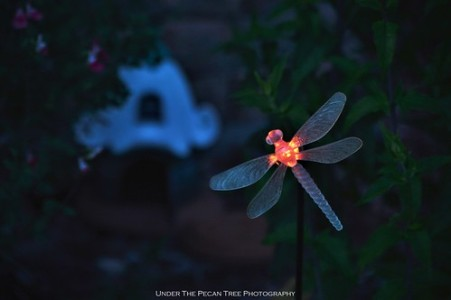 The dragonfly light turns on, it is time for the Tinker & Friends to come home for the night.