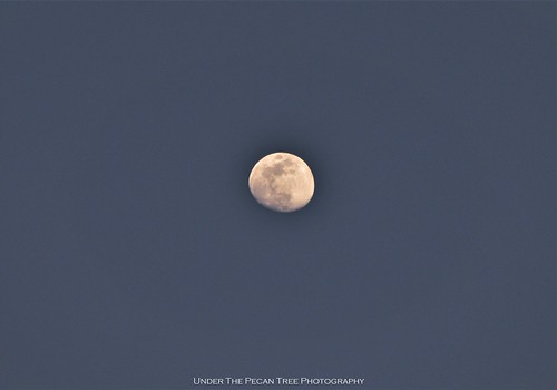 May's Waxing Gibbous Moon