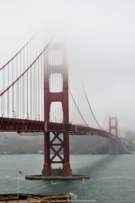 Misty Golden Gate Bridge I