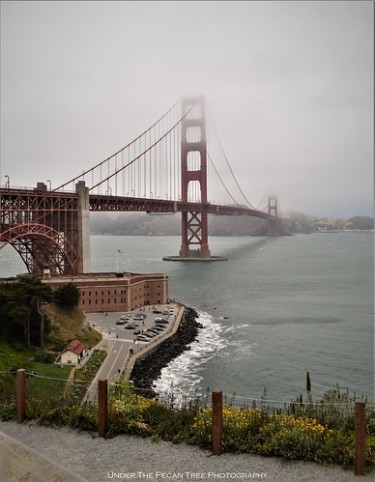 Misty Golden Gate Bridge III