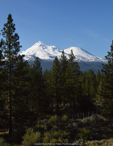 Beautiful Mount Shasta