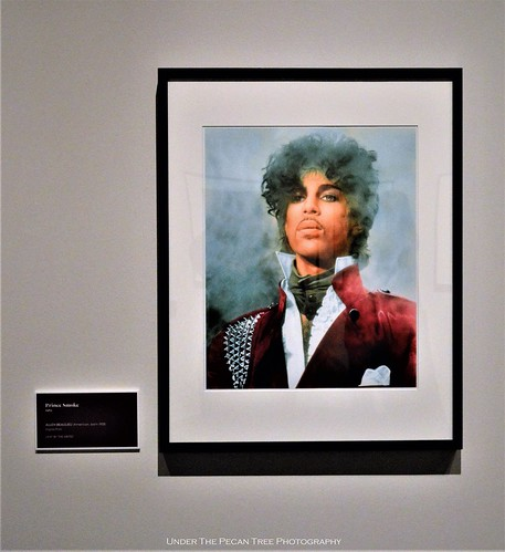 Prince in the early 1980s