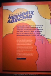 Wild Blue Angel: Hendrix Abroad 1966 - 1970