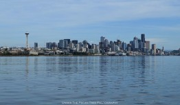 Seattle's skyline from the west on Puget Sound