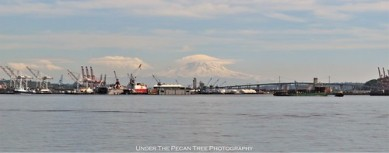The shipping port with the Cascade Range and its highest peak, Mount Rainier.