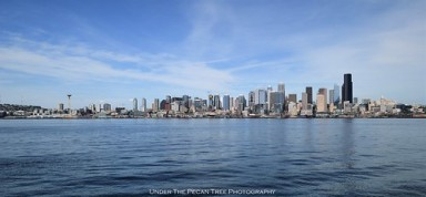 Seattle Skyline II