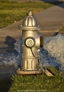 We have a nice silver water hydrant in our street.