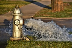 Water is released from the hydrant to reduce pressure on the pipes.