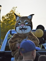 The Elementary School Mascot: Bob, the Bobcat. I felt sorry for Hailey in this warm weather. But she volunteered to be Bob for the parade.