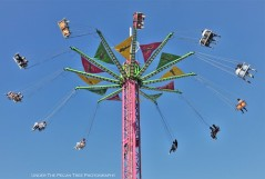 Swing Ride in Midway