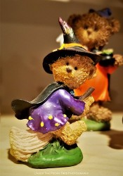 Witchy Bear