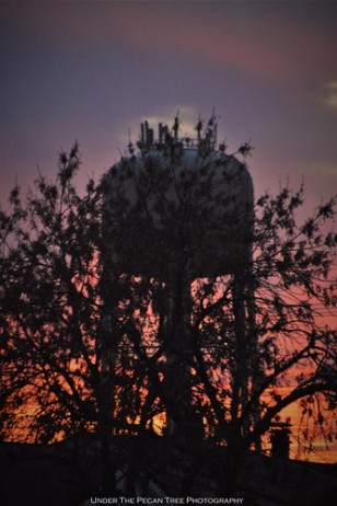November Watertower Sunset