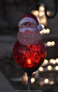 Our lovely LED Santa Garden Globe