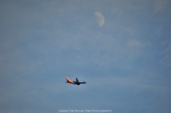 A Southwest Airlines plane passes the First Quarter Moon
